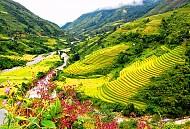 Kinh Nghiệm Du Lịch Tây Bắc Cùng Vietsense Travel