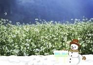 Mùa Hoa Trắng Mộc Chấu nở rộ khắp vùng Tây Bắc trong ngày Noel 2018