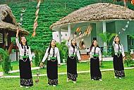 Người Thái ở Tây Bắc