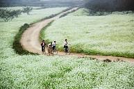 Tour Mai Châu - Mộc Châu - Sơn La - Điện Biên - Sapa 5 Ngày