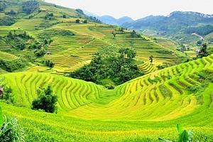 Điện Biên - Tây Bắc
