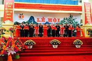 Hòa Bình Tổ Chức Lễ Hội Cam Cao Phong Lần Thứ Nhất