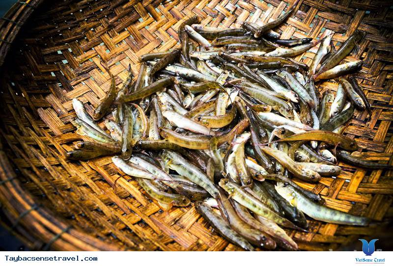 Đặc Sản Cá Bống Vùi Tro Ở Lai Châu
